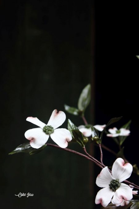 Rice paste dogwoods-the little eye candies
