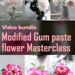 Modified Gum Paste & Flower Masterclass (A Bundle of Modified Gum Paste Modules 3&4)