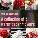 Video bundle – A collection of 5 wafer paper flowers