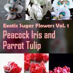 Exotic Sugar Flowers Volume 1: Peacock Iris & Parrot Tulip